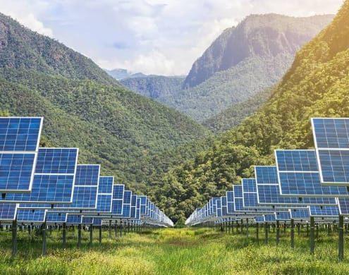 Qué panel solar elegir